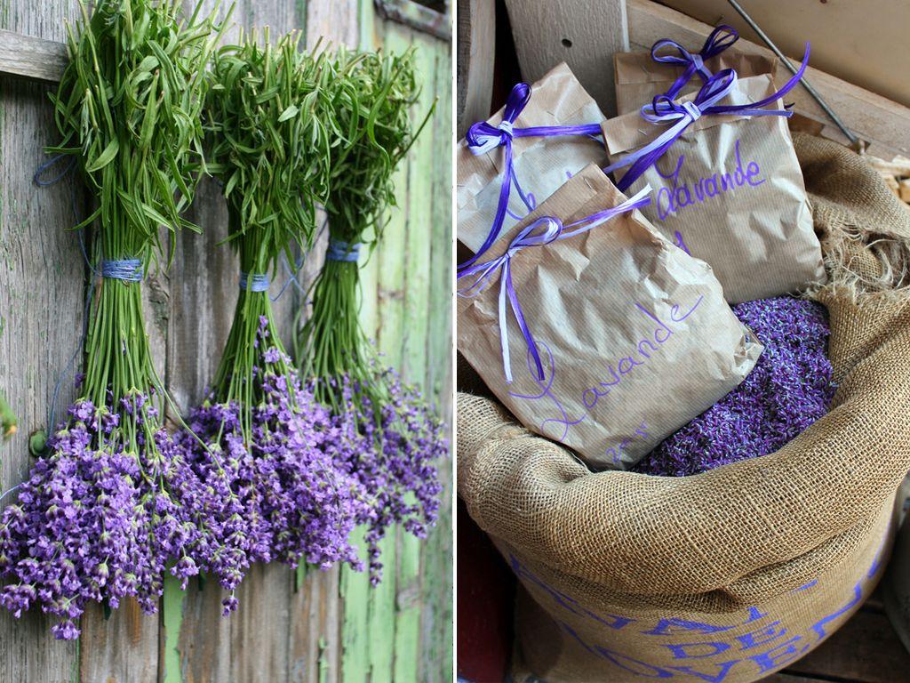 Lavendel kreativ | Pinterest | Lavendel, Deko und Deko ideen