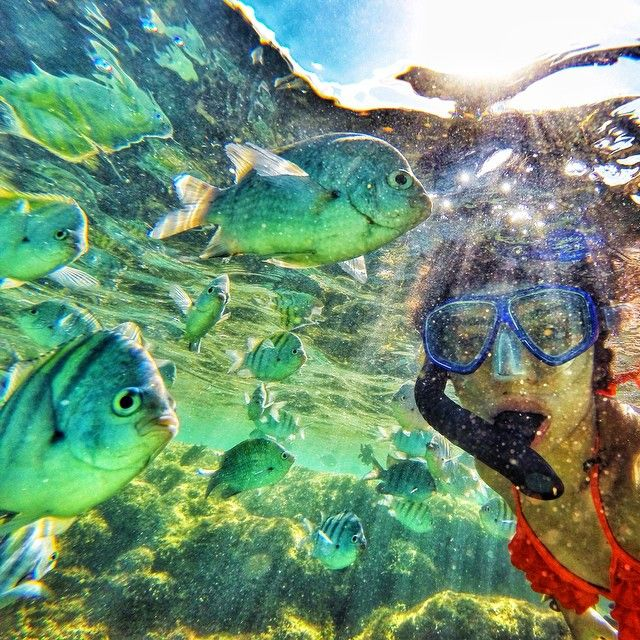 Piscinas naturais de Porto de Galinhas - Ipojuca - Pernambuco - Brasil. --- Natural pools of Porto de Galinhas - Ipojuca - Pernambuco - Brazil. --- @katiaglaisa  http://katiaglaisa.com.br/