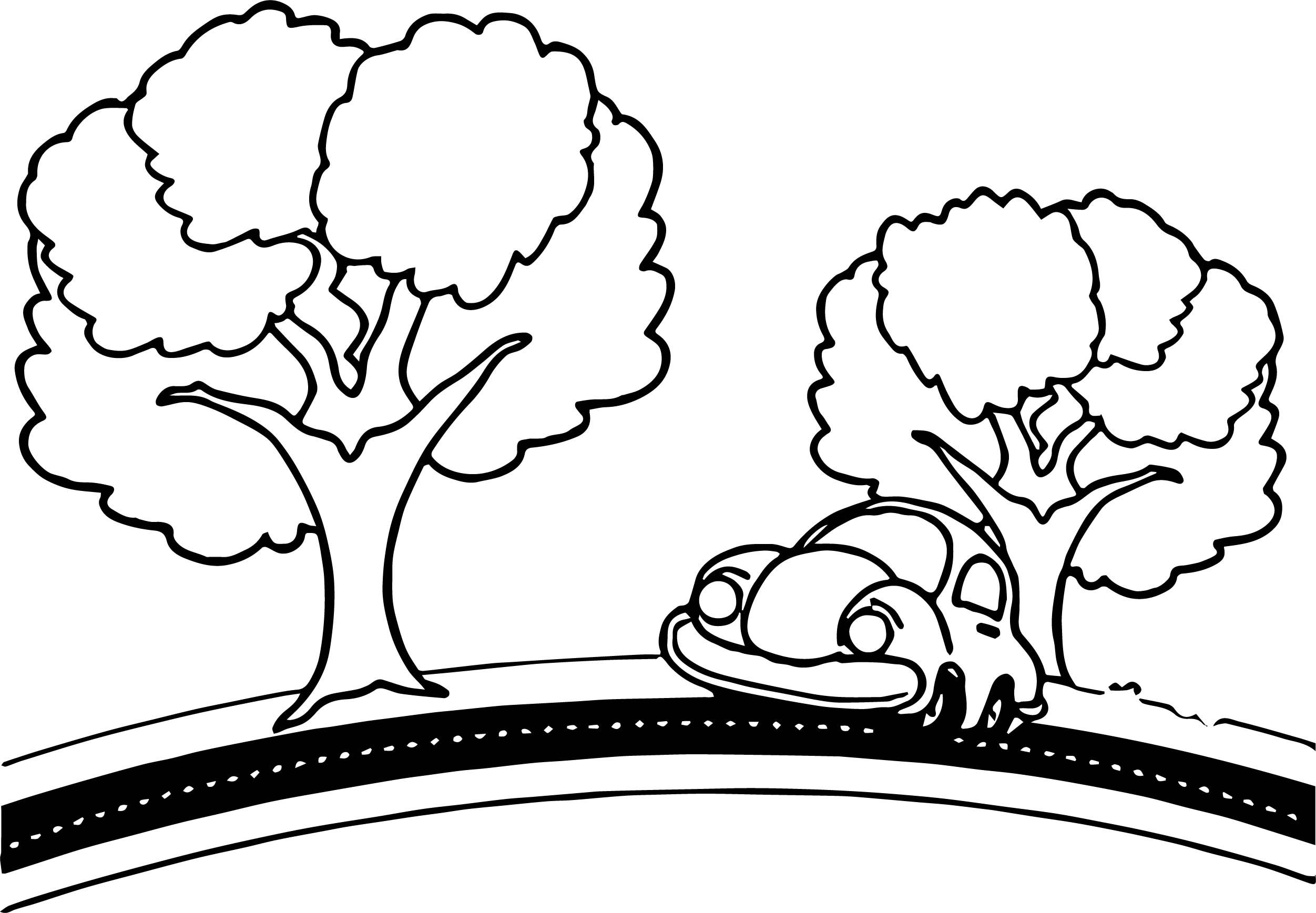 Car Tree Road Coloring Page Coloring pages, Cool cars