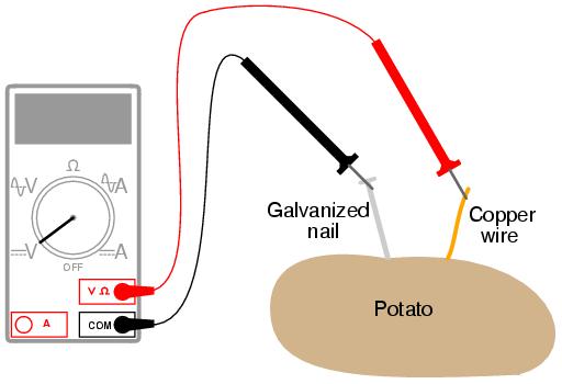 Anode Cathode Potato