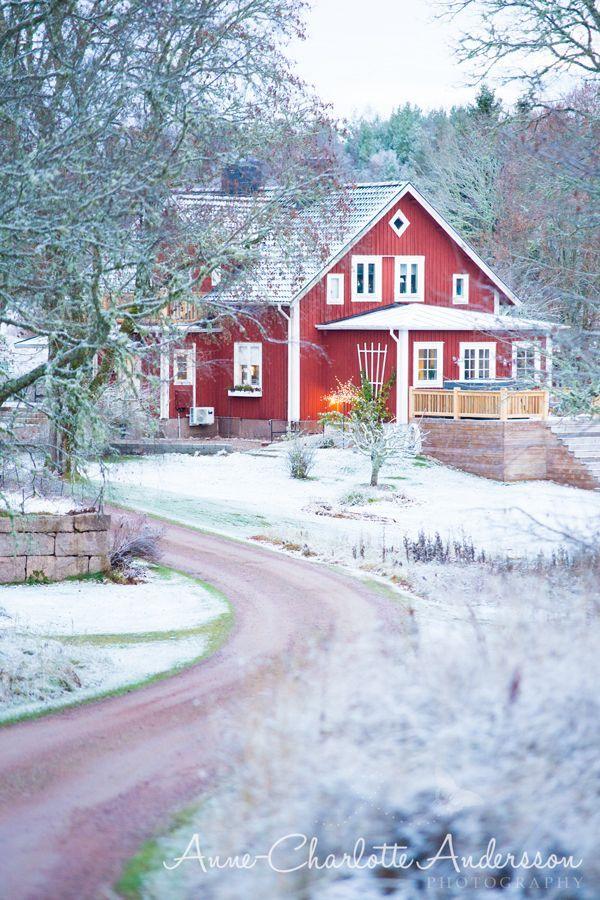 Att få vakna till snö (♥ Fyra årstider - mitt liv på landet)