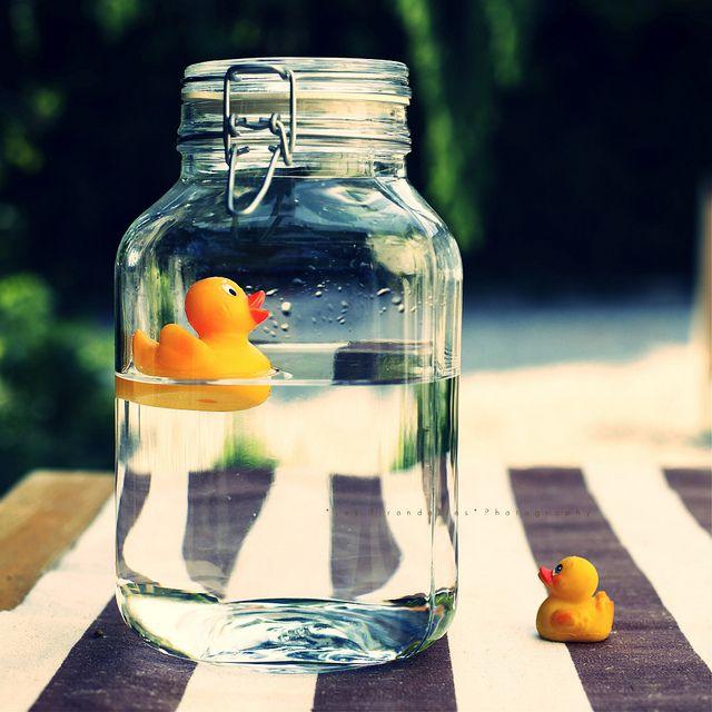 ¡Fácil y hermosa! Patitos sobre agua en frasco hermético