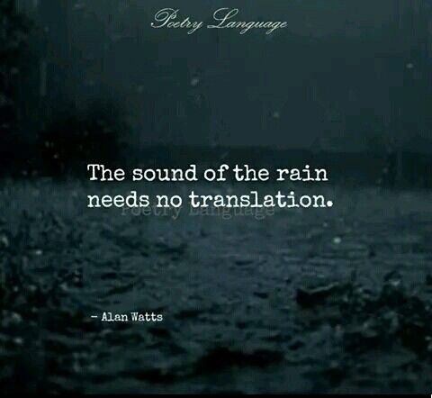 Because it just says cozy. | Rain quotes, Weather quotes ...