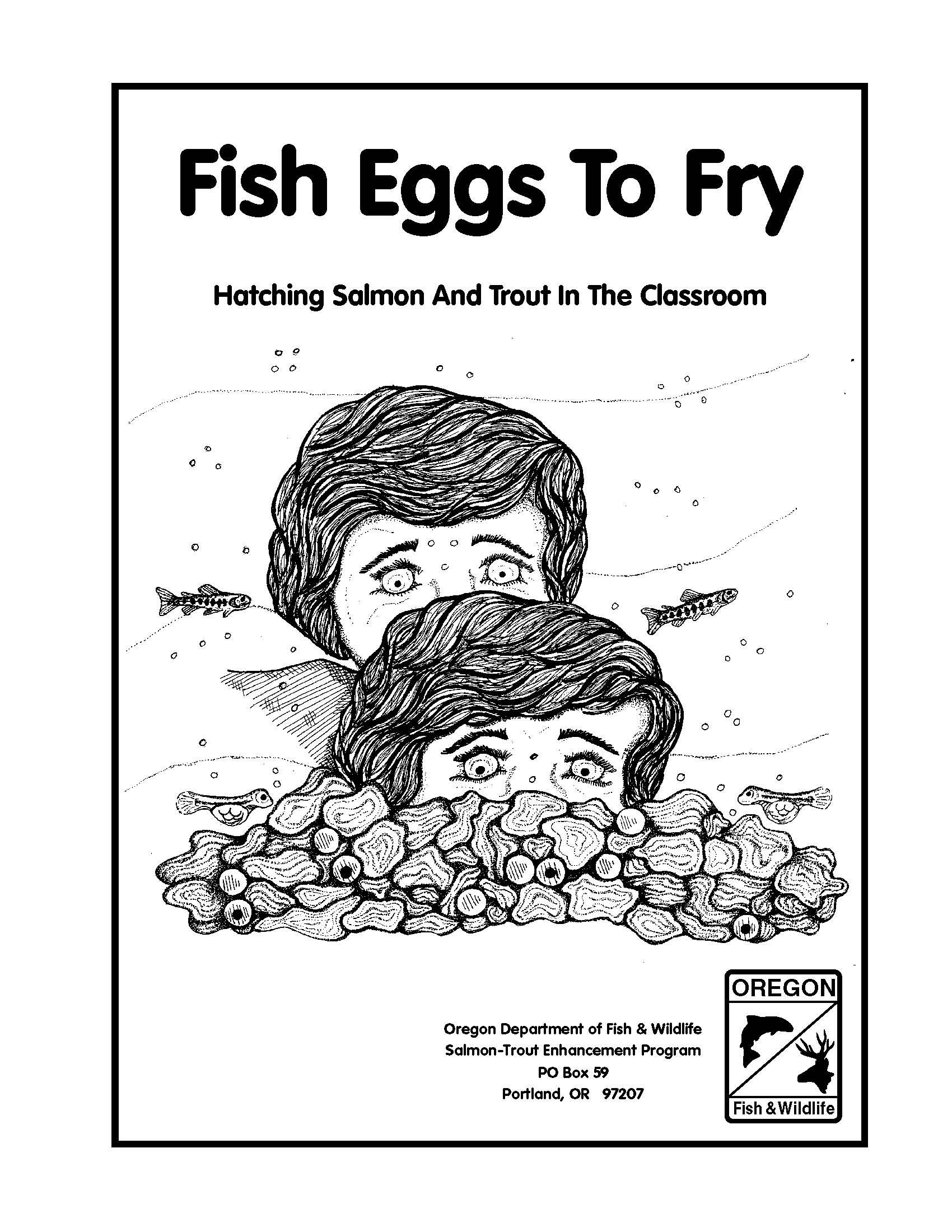 Fish Eggs To Fry Hatching Salmon And Trout In The