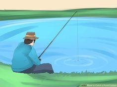 Photo of Catch a Pond Catfish