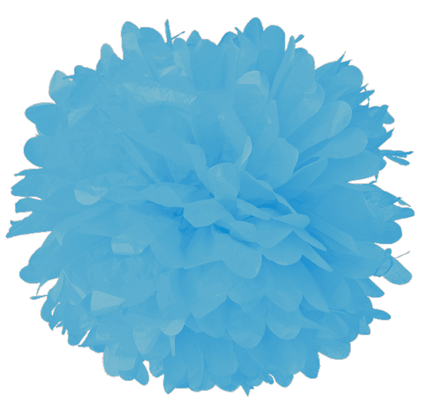 10 Powder Blue Tissue Pom Poms Lanterns And More Tissue Pom Poms Pom Pom Paper Pom Poms