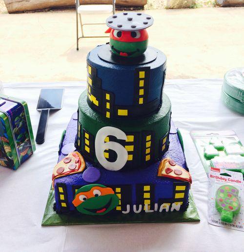 Ninja Turtle Cake Ninja Turtle Birthday Cake Tmnt Cake
