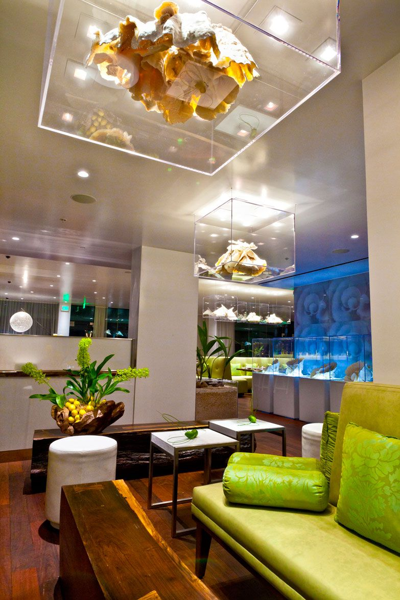 Morimoto Waikiki Restaurant, Hollywood, California designed by ...