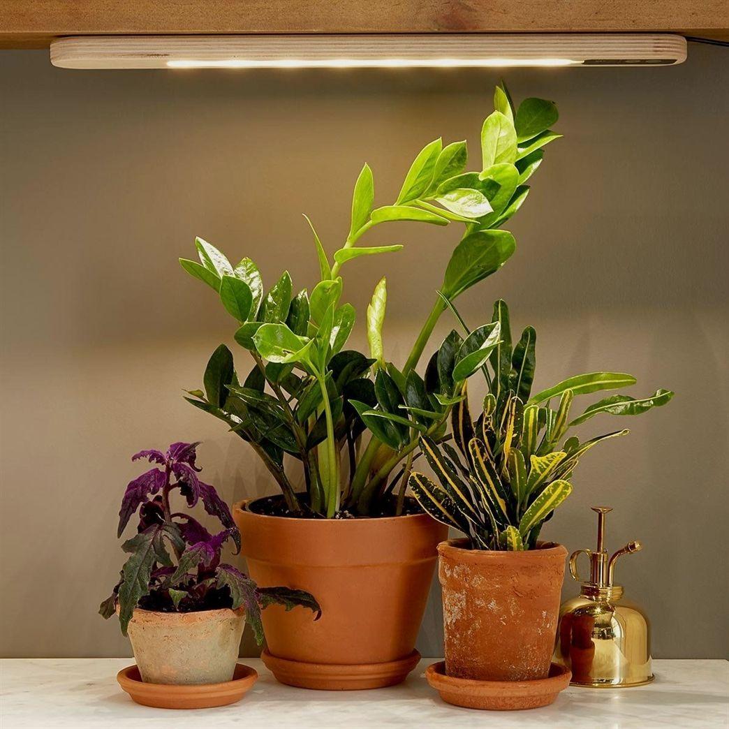 Hang anywhere grow light plant light indoor gardening