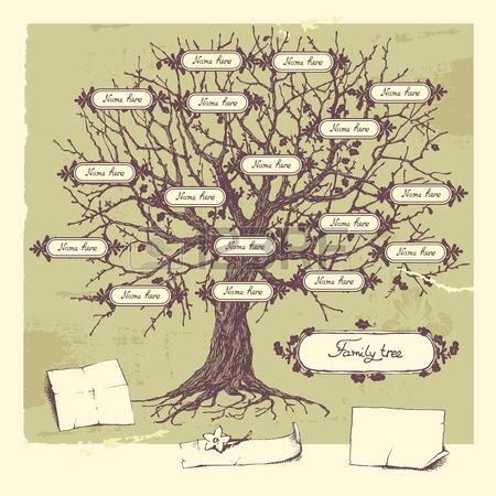 Vector Illustration Of Family Tree Oak Hand-drawn Tree Royalty