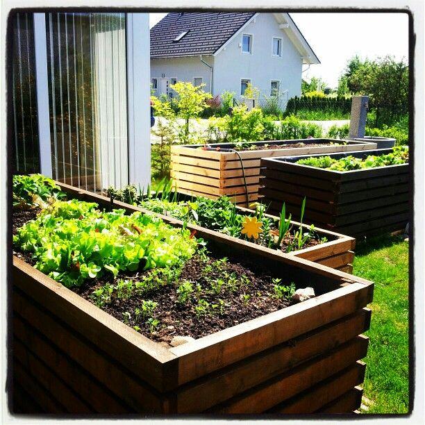 Hochbeete Vorgarten Plants