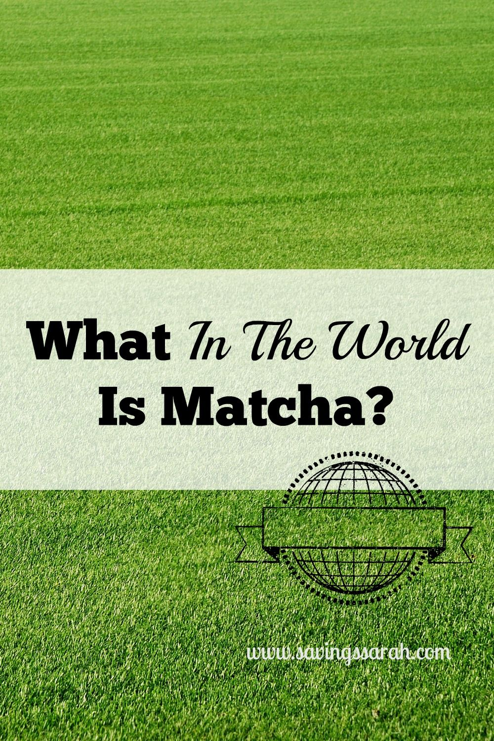 What in the World is Matcha? | Earning and Saving with Sarah