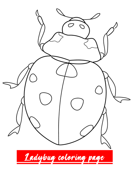 Ladybug I 2020 Bat Coloring Pages Animal Coloring Pages Coloring Pages