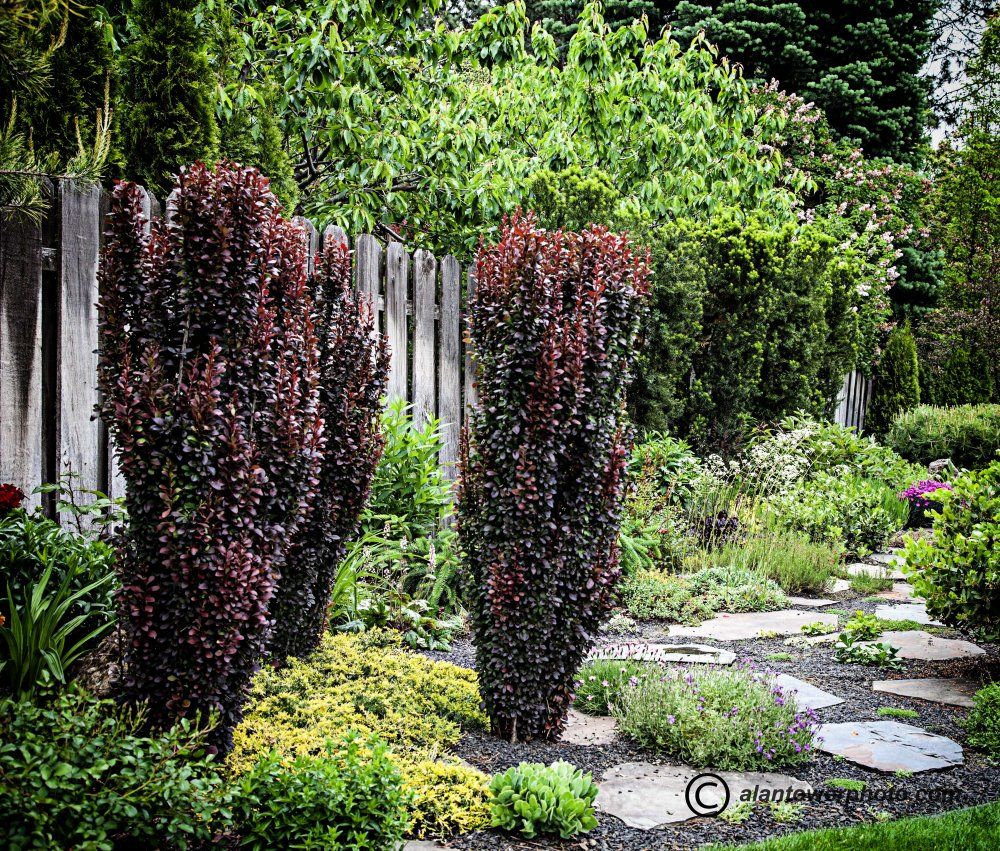 Tower Perennial Gardens Offers A Range Of Garden Design And Landscape  Services. We Design Gardens Using The Fantastic Array Of Plants Available  At Tower, ...
