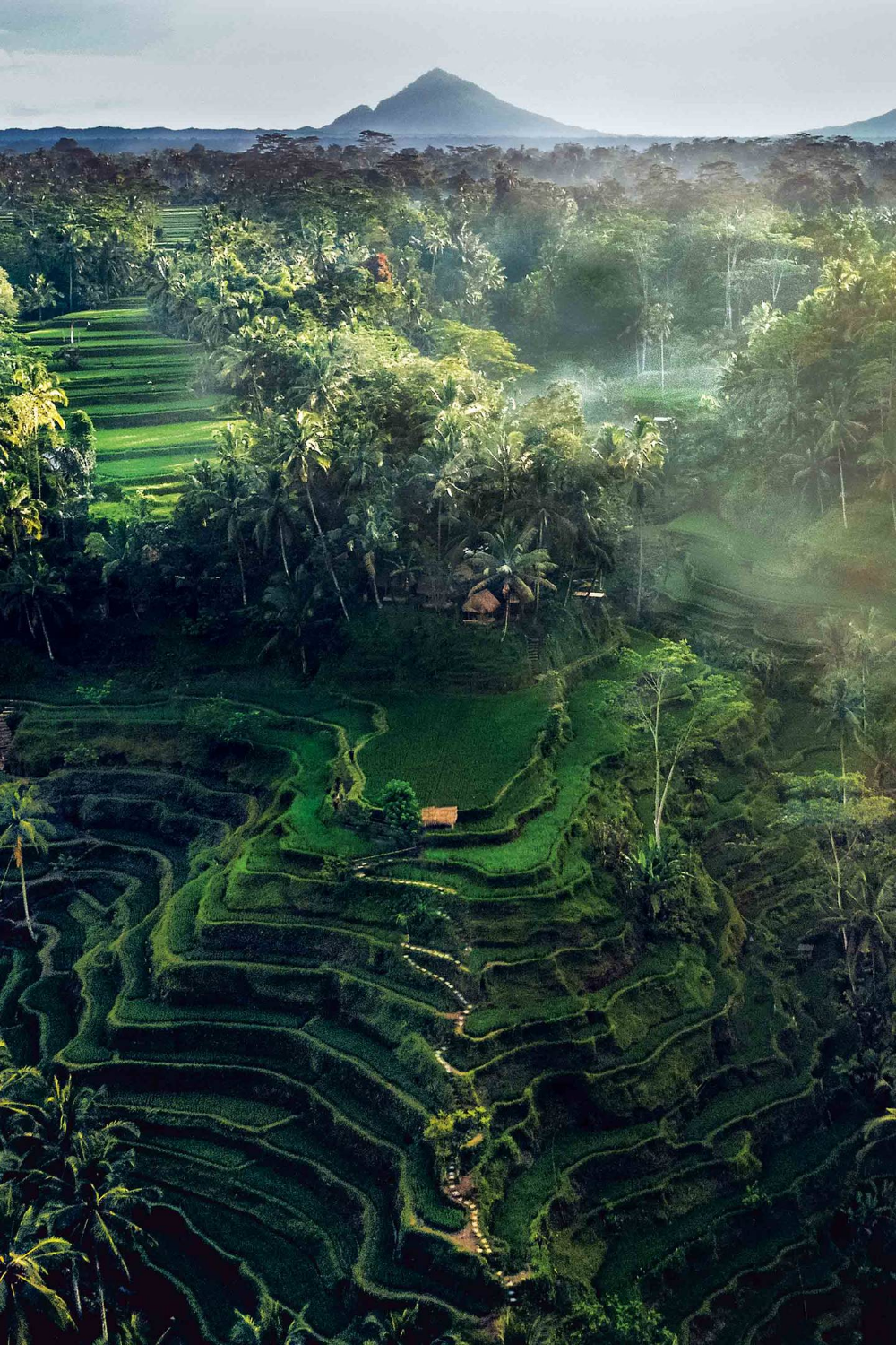 Things to do in Ubud, Bali | CN Traveller