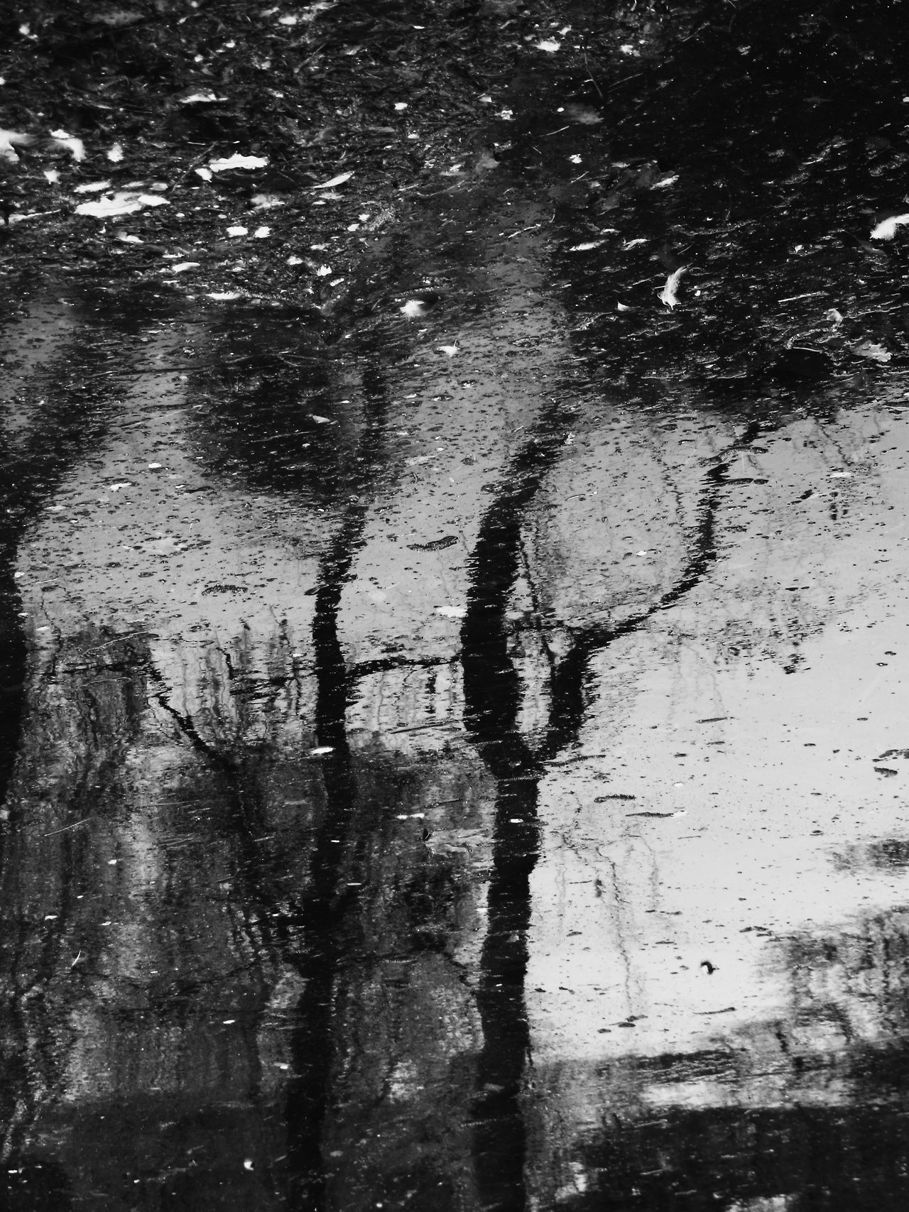 Capturing Reflections in black & white in the Rain.....