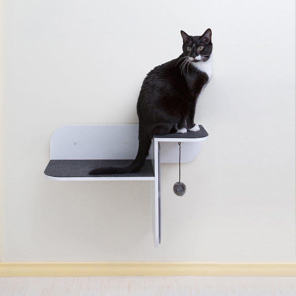 hauspanther modern cat furniture wallmounted cat perch  cat  - hauspanther modern cat furniture wallmounted cat perch – designer petfurniture  accessories