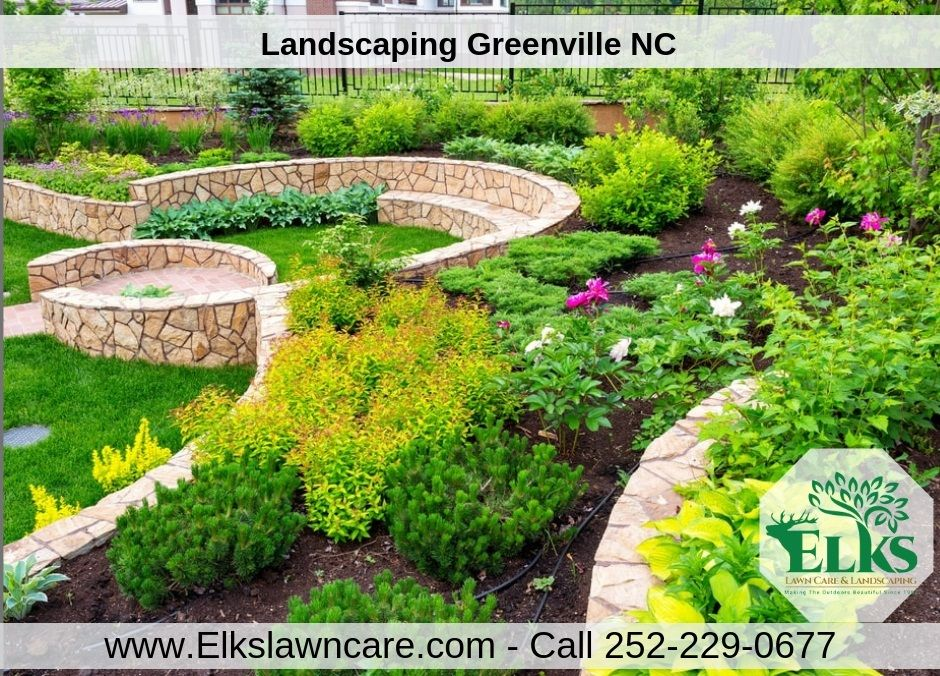 Greenville NC is no stranger to big storms and even
