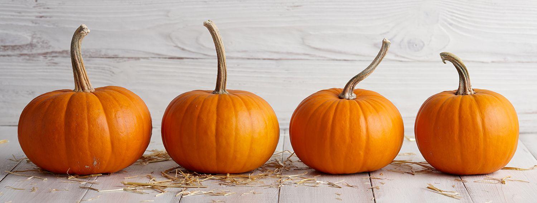 Our Love Affair With Pumpkins Pumpkin Pumpkin Face Mask Pumpkin Faces