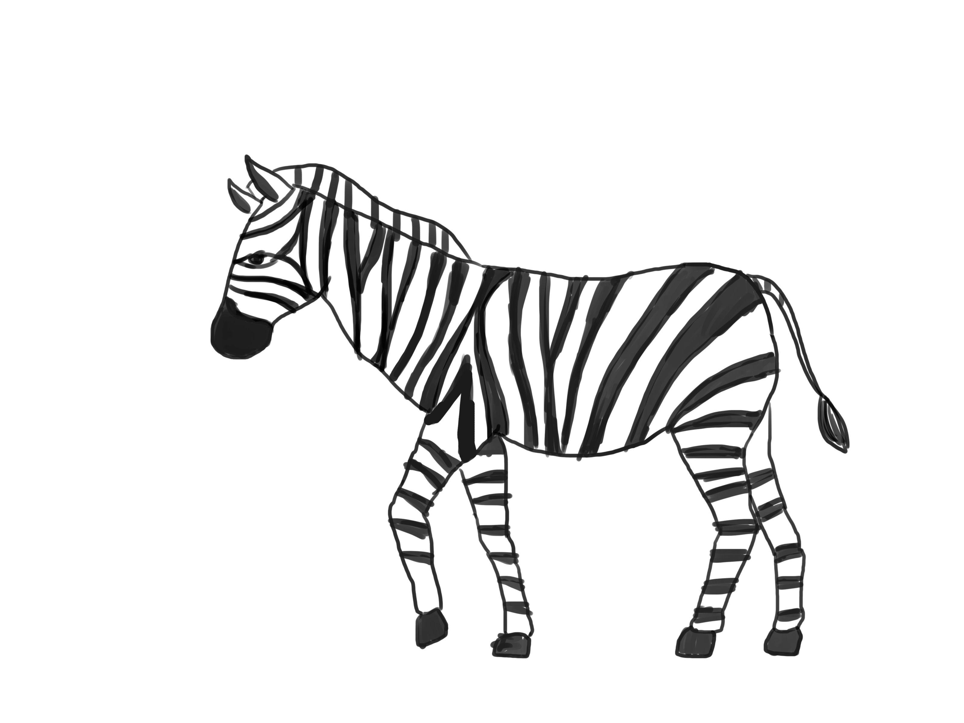 How To Draw A Zebra Zebra Drawing Zebra Cartoon Zebras