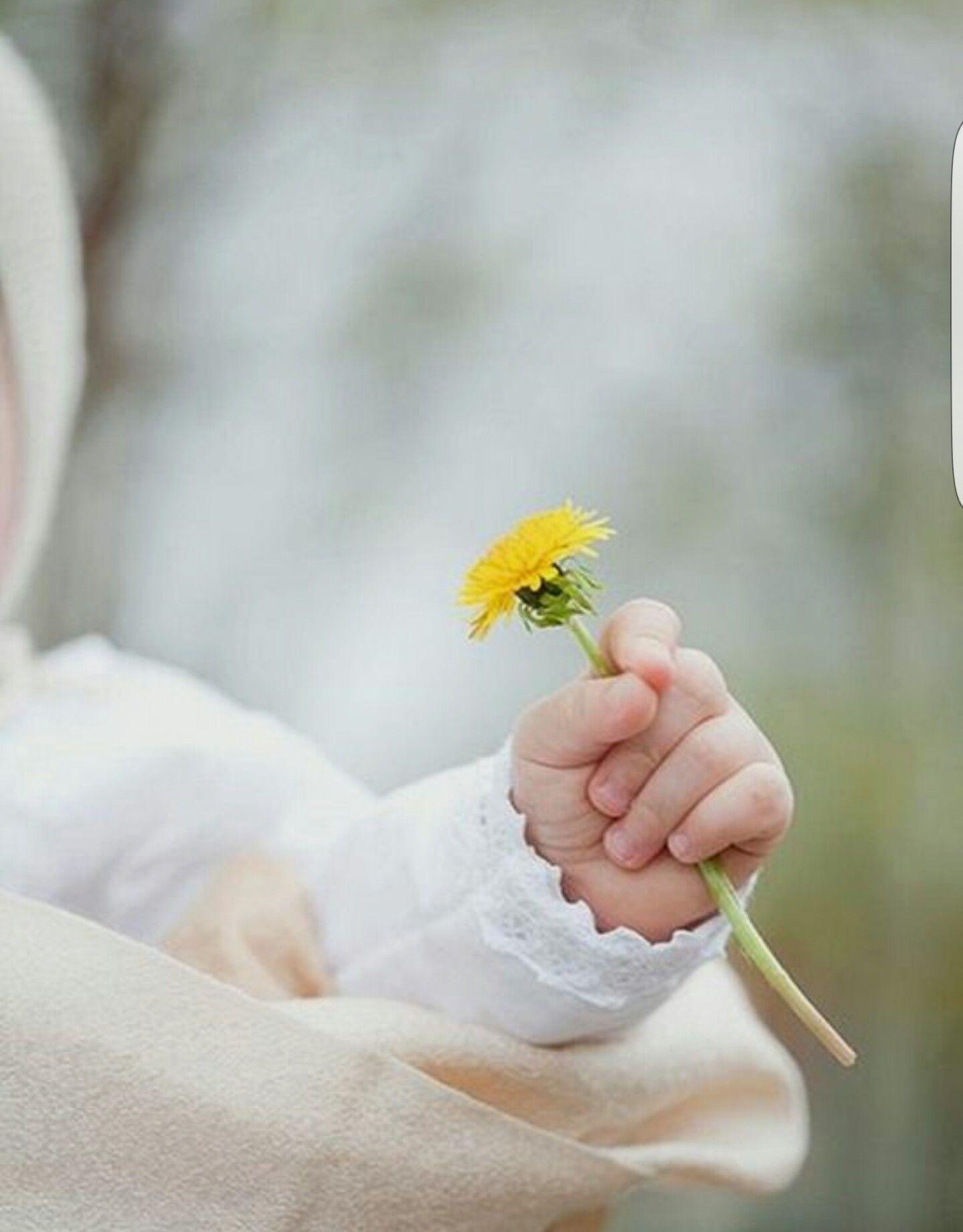 Картинки цветы дети руки