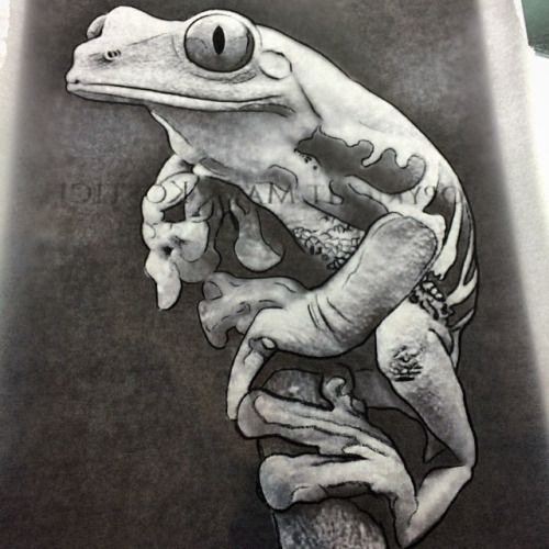 Black And White Frog Tattoos Google Search Tattoos Tattoos