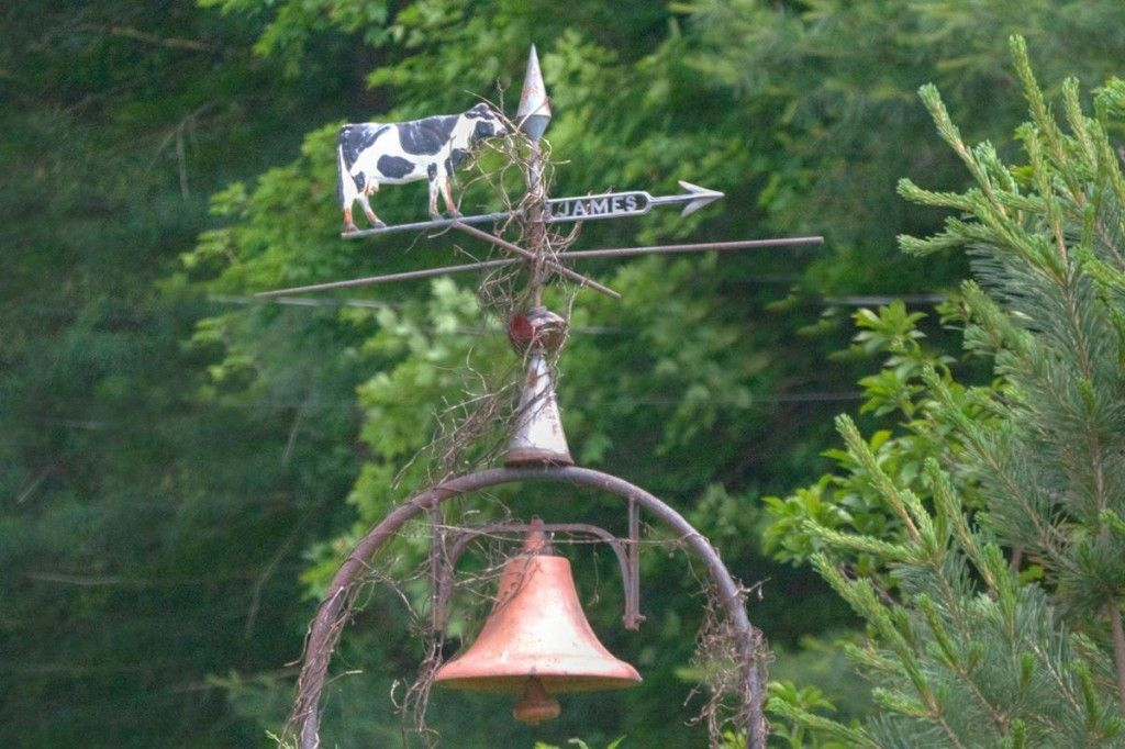 Found this cow weathervane at Knox Lake in Fredericktown