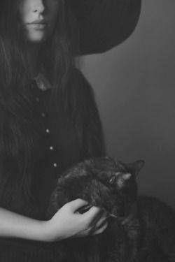 Un gatto non farebbe mai amicizia con qualcuno che non è ben disposto verso di lui. I gatti non sbagliano mai sulle persone.  A. Oz