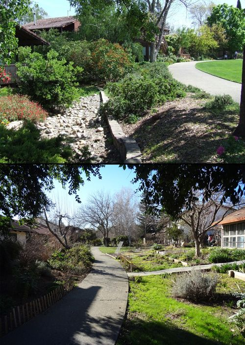 Permaculture Design Examples Google Search: Intentional Permaculture Communities