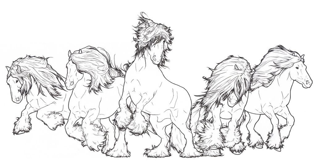 Gypsy+Vanner+Herd+by+ReQuay.deviantart.com+on+@deviantART