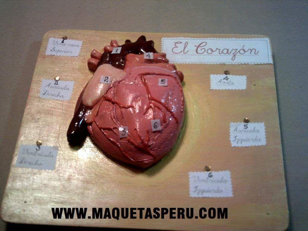 MAQUETA EL CORAZON | dioramas maquetas miniaturas modelos ...