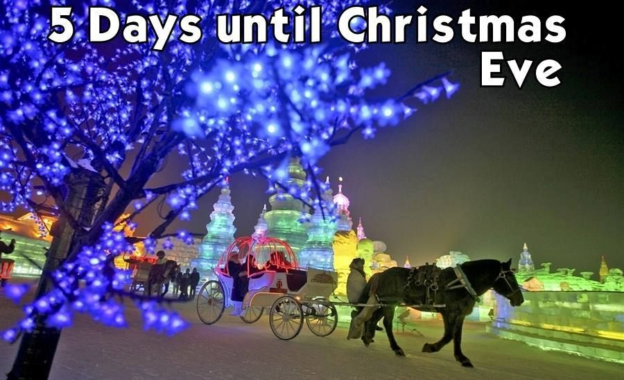 Only 5 more days till Christmas Eve! BEAUTIFUL PHOTOS of