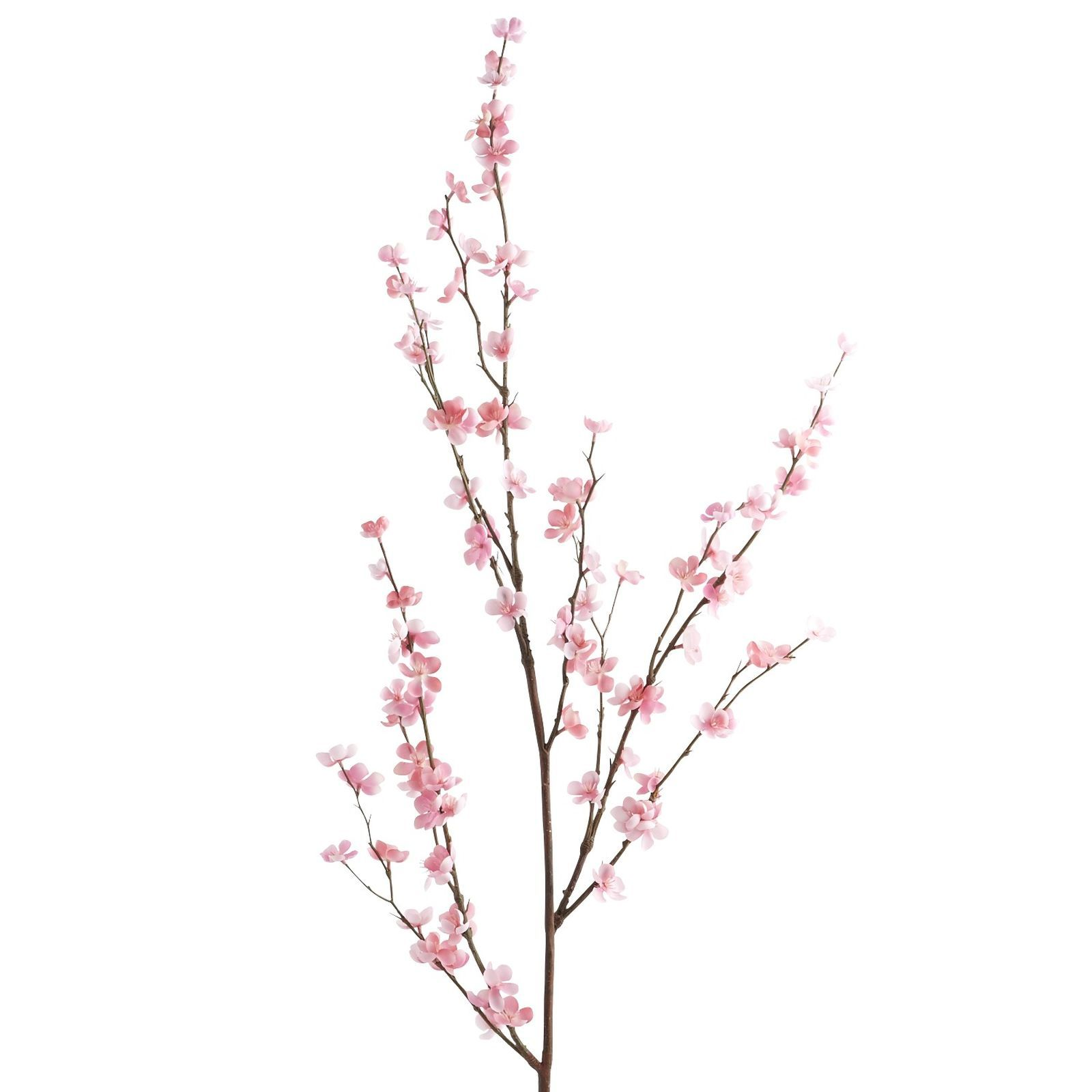 Faux Cherry Blossom Branch Pink Cherry Blossom Branch Cherry Blossom Blossom