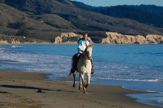 5 Places To Ride Horses On California Beaches 7x7 My Latest Article In