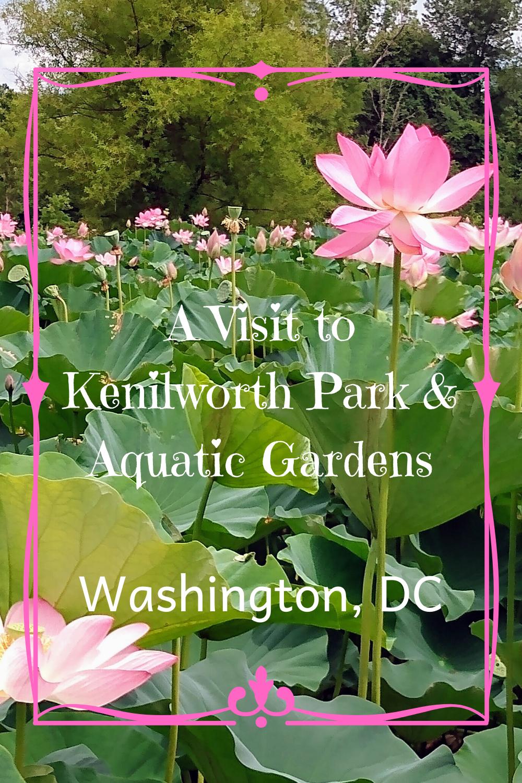 d2fddaa44f0388e9f53c01e5c0a69527 - Kenilworth Park And Aquatic Gardens Map
