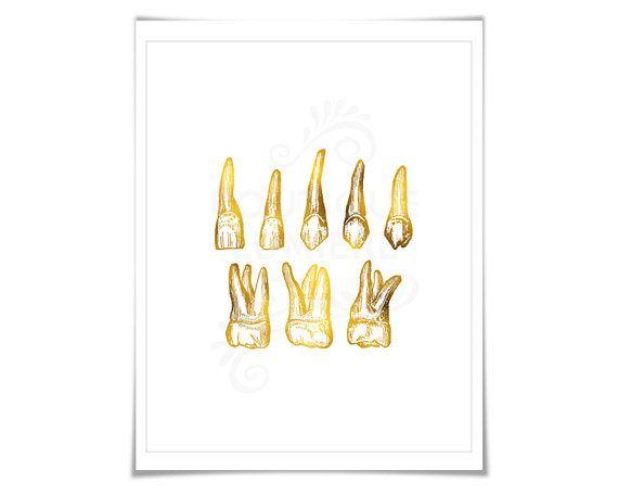 Human Teeth Gold Foil Print Dental Office Wall Art Anatomy | give ...