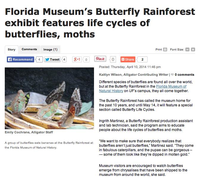 Florida Museum's Butterfly Rainforest Exhibit Features