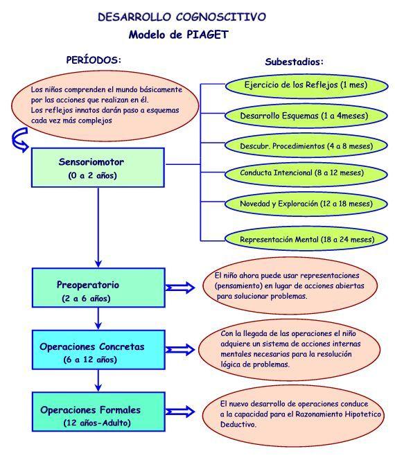 Psidesarrollo2grupo21 Tema 2 Desarrollo Psicológico Durante La Infancia 0 2 Años Psicologia Del Aprendizaje Psicologia Niños Psicologia Educacional