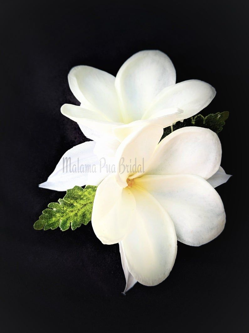 Elina Real Touch Plumeria Flower Hair Comb With Pearls Malama Pua Bridal Silk Flower Hair Accessories Bridal Hair Flowers Flowers In Hair