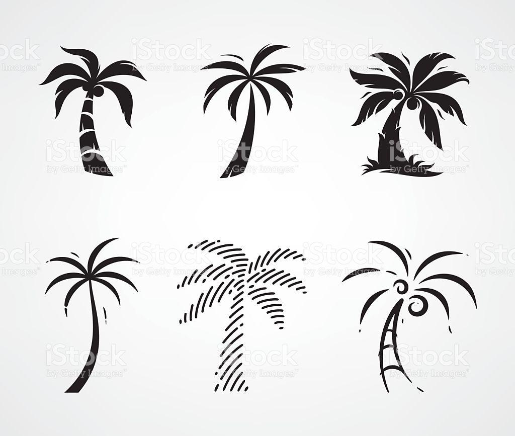 Palm Tree Set Coqueiro Desenho Tatuagem Carvalho E Desenho Palmeira