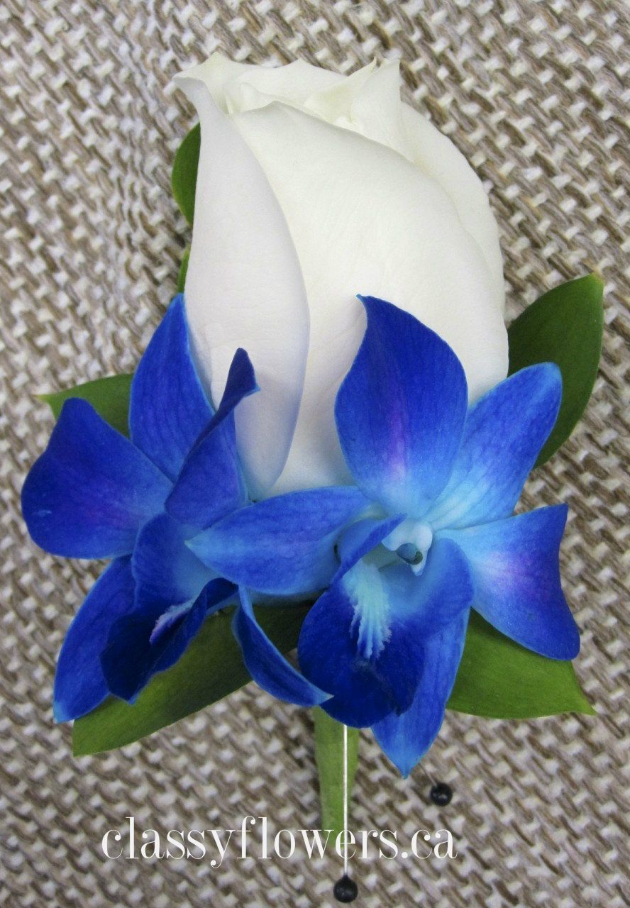 blue orchid and white rose boutonniere mr amp mrs mcguire