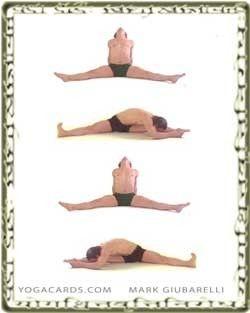 pinhunter preston on yoga poses  yoga cards vinyasa