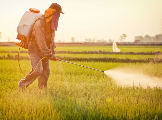 Is Roundup Driving The Autism Epidemic? Leading MIT Researcher Says YES