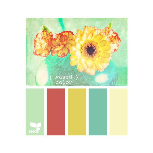 Design Seeds ❤ liked on Polyvore featuring design seeds, palettes and colors