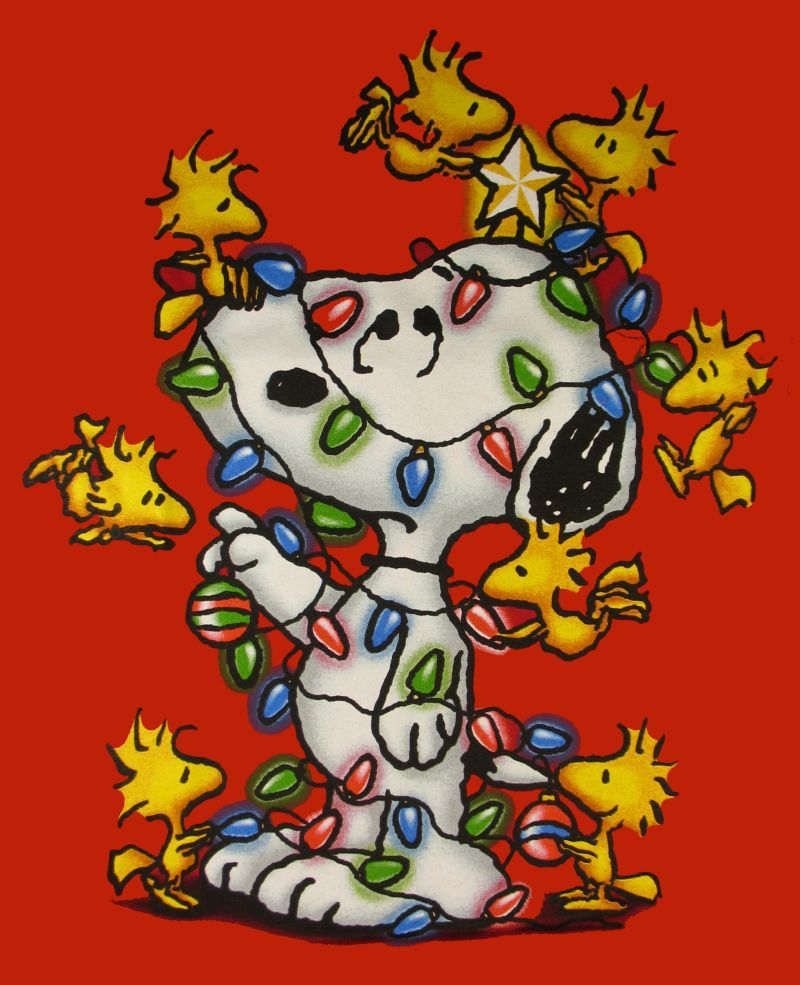Snoopy, Christmas lights, woodstock | Blockheads are cool ...