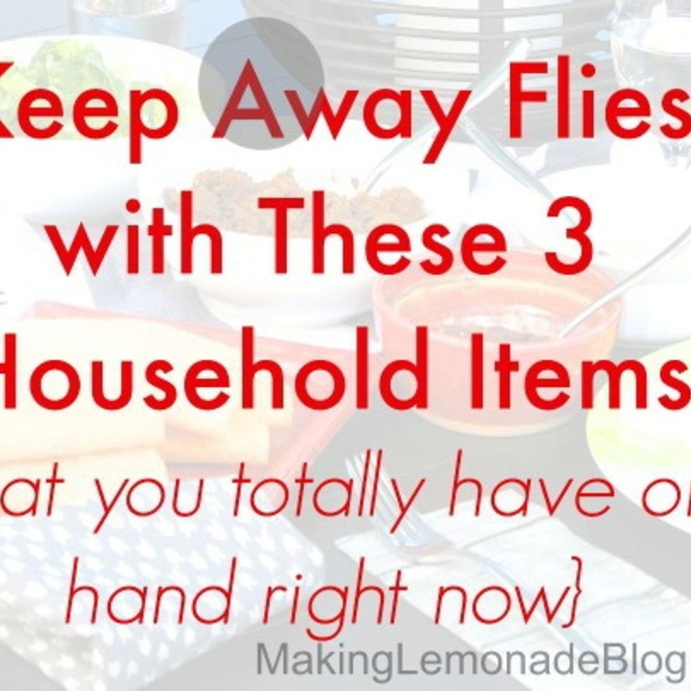 How To Keep Flies Away With 3 Home Items Keep Flies Away Fly Repellant Pest Control