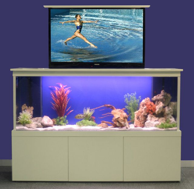 tv tank hides your flatscreen behind a big aquarium hometone home automation and smart home guide - Fish Tank Designs My Home