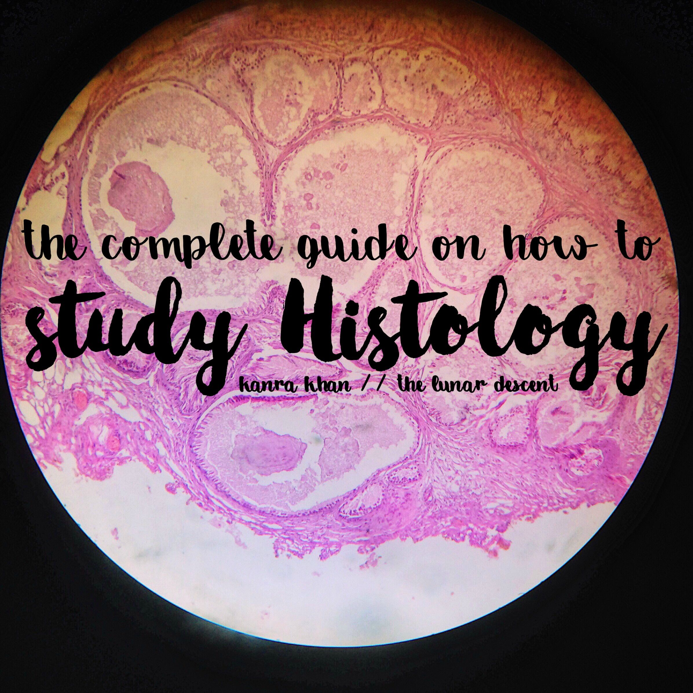 The Complete Guide On How To Study Histology And HistoPathology in ...