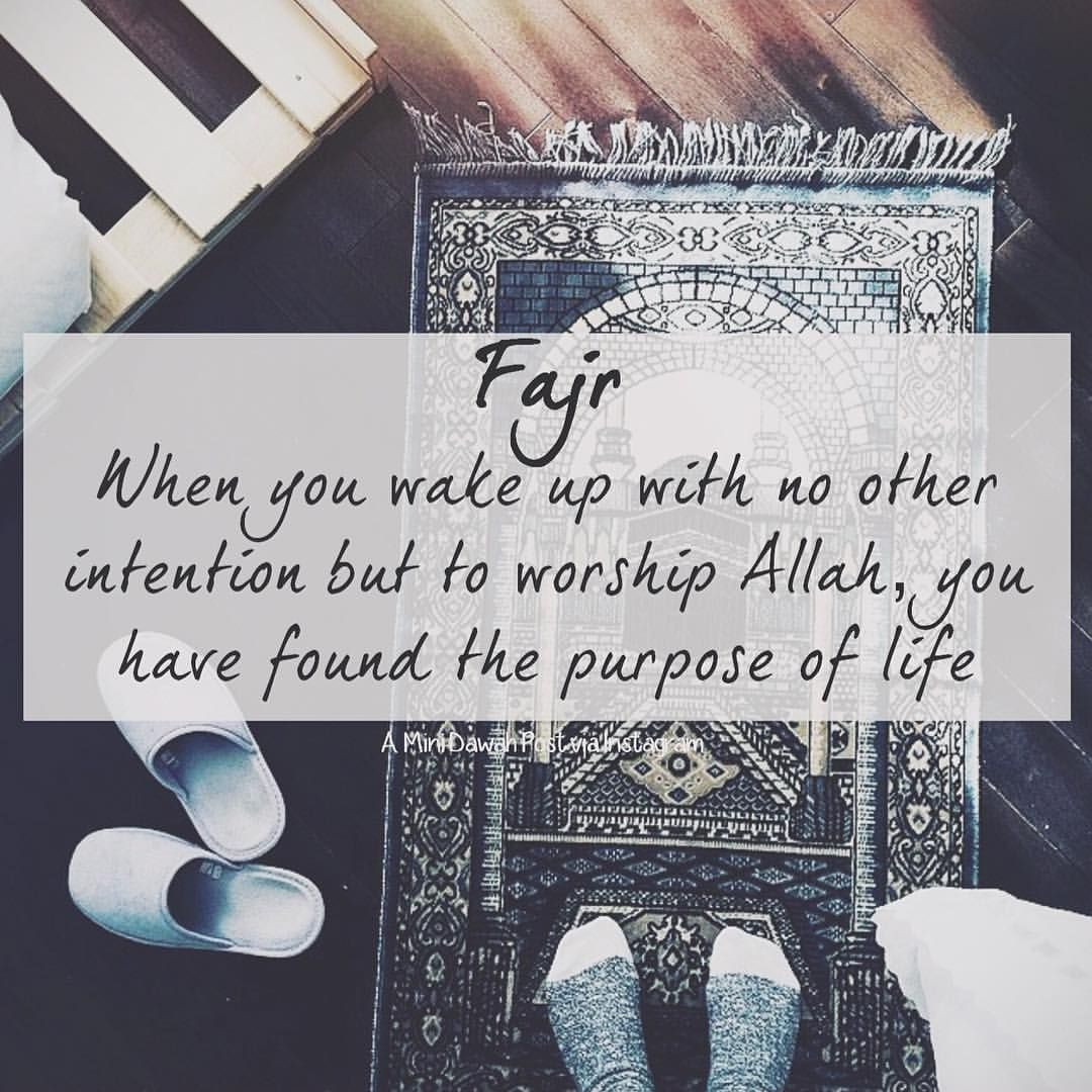 how to find your purpose in life islam