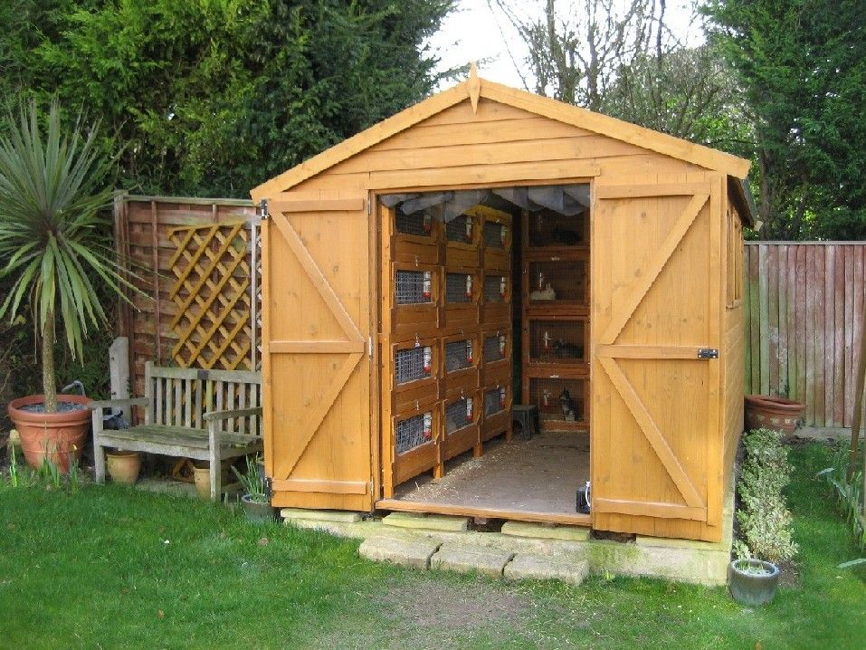 Building a rabbit shed and need help rabbits online for Build a barn online